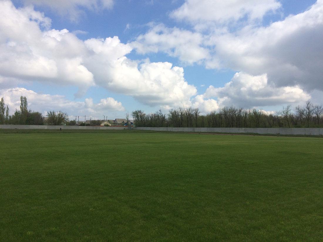 Газон футбольного поля на объекте