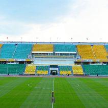 Футбольные поля с натуральным газоном
